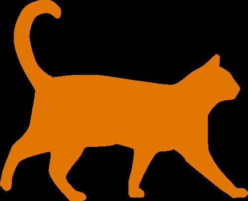 Für die Katze