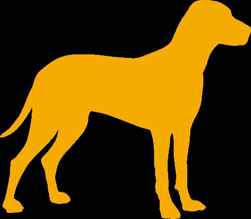 Für den Hund