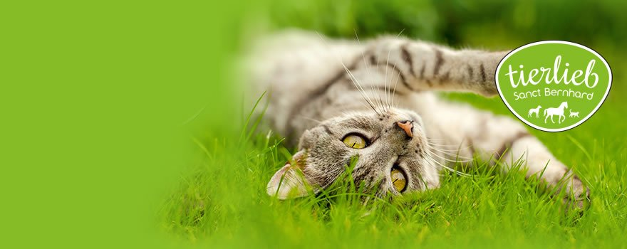 tierlieb pour chats